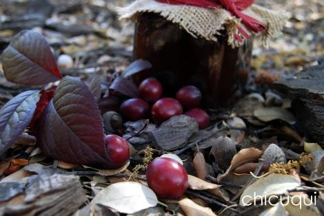 mermelada prunas chicuqui galletas decoradas 03