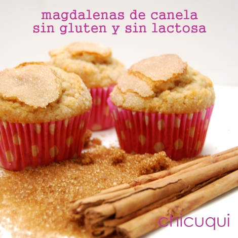 Receta de magdalenas sin gluten y sin lactosa en galletas decoradas chicuqui.com